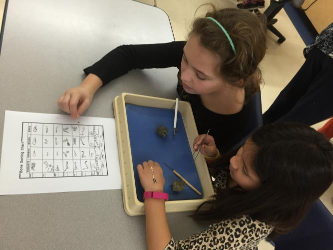 Image of Fourth graders met with high-school science teacher Dr. Kellie Whited to dissect owl pellets.